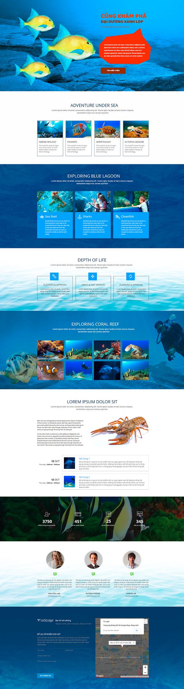 Giao diện website CÙNG KHÁM PHÁ ĐẠI DƯƠNG XANH LDP - Thiết kế website CIP